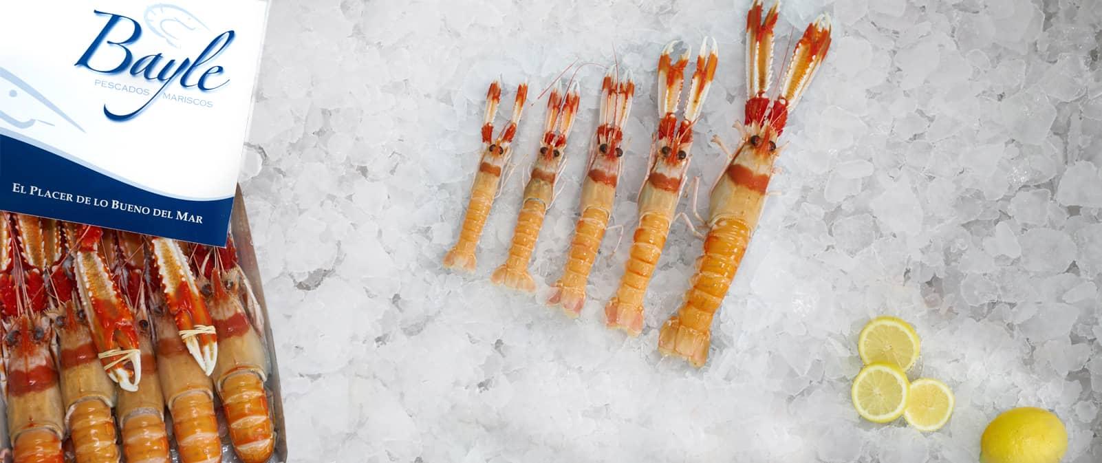 Cigalas Suprema Congeladas